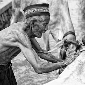 old man with the cow's by Area Duatiga Romantois - People Portraits of Men ( areea23, pedesaan, sapi, tua, bondowoso, desa )