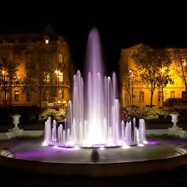 Tomislav square at night by Nena Volf - City,  Street & Park  Fountains ( tomislav square, fountain, croatia, night, zagreb )