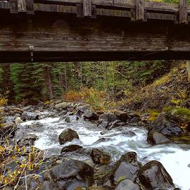 West eagl creek by D.j. Nichols - Instagram & Mobile Android ( west eagle creek )