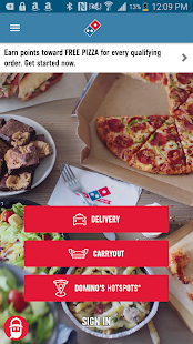 Domino's Pizza USA for pc