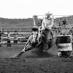 Two Hearts One Dream by Brian  Shoemaker  - Black & White Sports ( barrel racer, barrels, horse, rodeo, cowgirl,  )