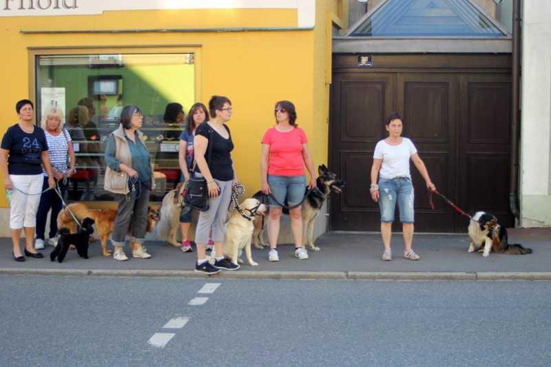 7. Juni 2016: On Tour in Neustadt a.d. Waldnaab - Neustadt%2Ban%2Bder%2BWaldnaab%2B%252824%2529.jpg