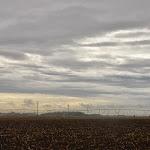 Wisconsin Landscape.JPG