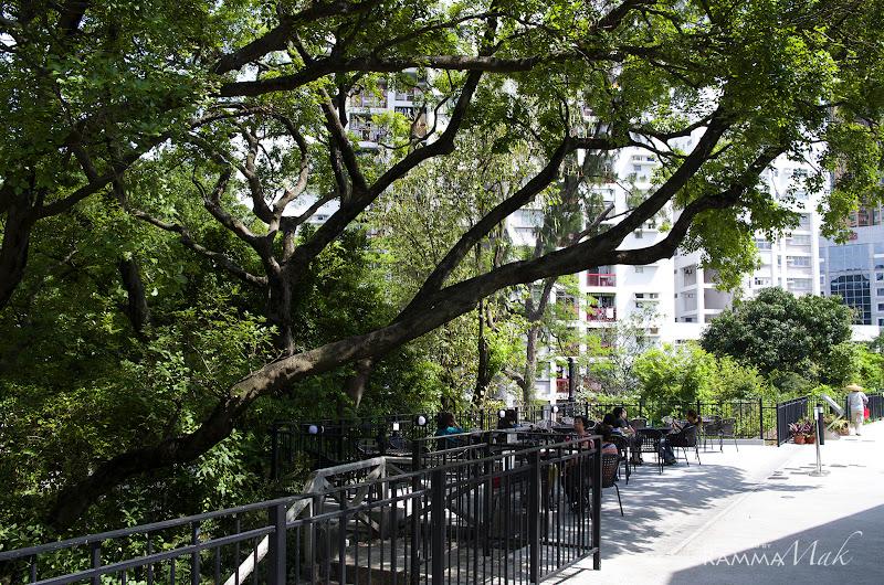 在大樹下閒坐避暑