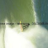 _DSC0565.thumb.jpg