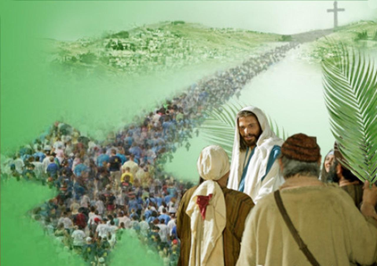 Xin đừng theo ý con (28.3.2021 – Chúa Nhật Lễ Lá, Năm B- Rước lá)