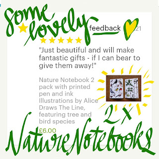 Nature Notebook feedback Alice Draws The Line
