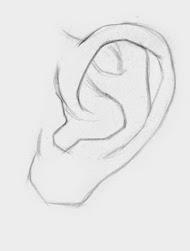 Draw ear step 2