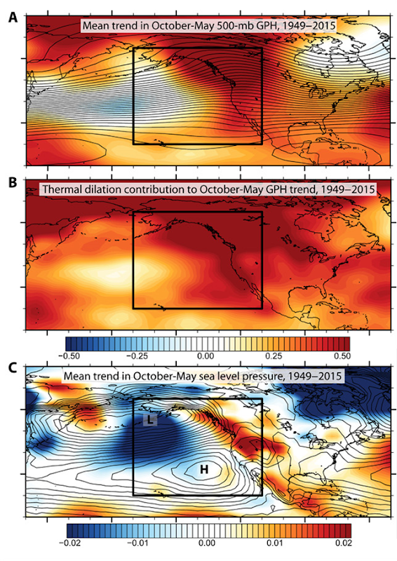 Observed October-May changes across the northeastern Pacific. (A) Mean trend in October-May 500-mb GPH over the northeastern Pacific and western North America, 1949–2015 (meters per year). (B) Contribution of lower tropospheric warming (thermal dilation) to observed October-May GPH trend (meters per year). (C) Mean trend in October-May SLP over the northeastern Pacific and western North America, 1949–2015 (millibars per year). Black box in (A) to (C) depicts the NPD. Graphic: Swain, et al., 2016 / Science Advances