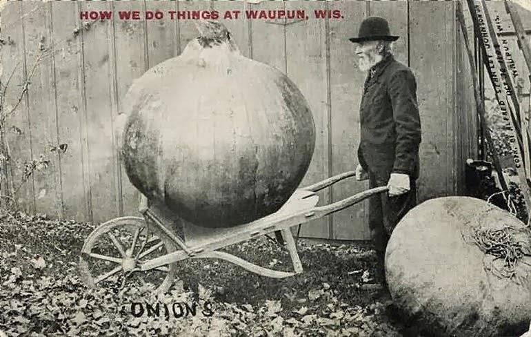 Fotomontagem de uma cebola gigante