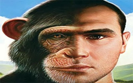 homem-macaco 2