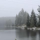 01. Januar 2016: Neujahrswanderung ins Waldnaabtal - IMG_1564.JPG