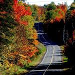 Chemin de Dunany - automne 2012.JPG