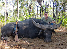 Darrell Hodges from Australia hunted this great old buffalo with sweeping horns. These old bulls with really heavy mass and a wide span, are hard to beat.