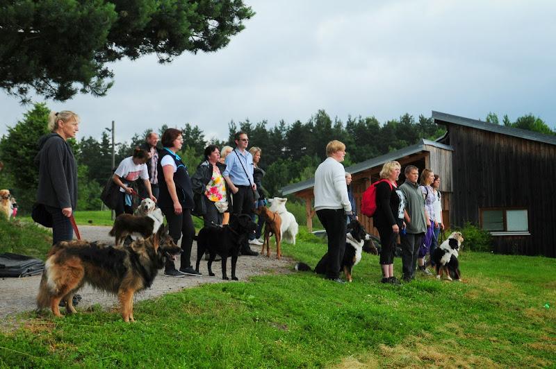 20130623 Erlebnisgruppe in Steinberger See (von Uwe Look) - DSC_3724.JPG
