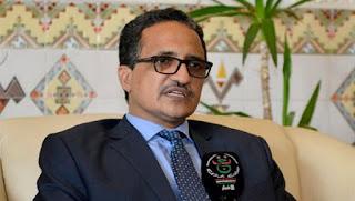 Les relations entre la Mauritanie et l'Algérie «solides et diversifiées»