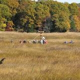 Guilford Salt Meadow Sanctuary Osprey Platform - sfs%252C10-25-09%2Bosprey%2Bplatform%2Binstall%252C065.JPG