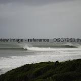 _DSC7263.thumb.jpg
