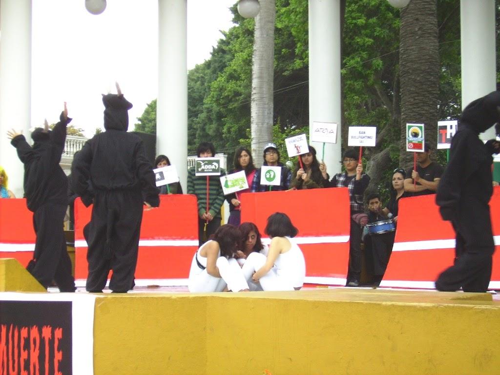 homomaquia2010ALCO (139)