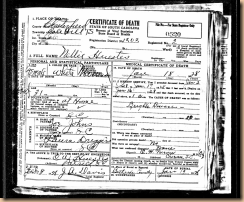Death Certificate - Nellie Johns Heustess