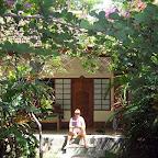Pondok Sari resort (Pemuteran, North Bali)