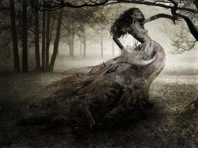 Dark Nature, Night Magic