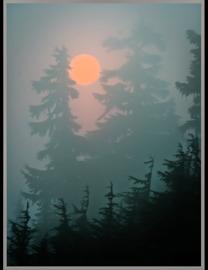 """Red Sun Rising"" by Valerie Henschel 1st place Digital General ""A"""