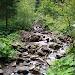 Dzień Trzeci - szlak na szczyt Pilska
