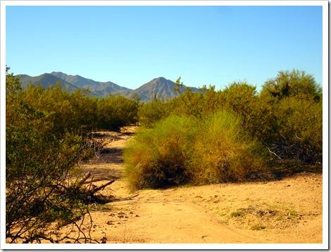 boondocking in AZ