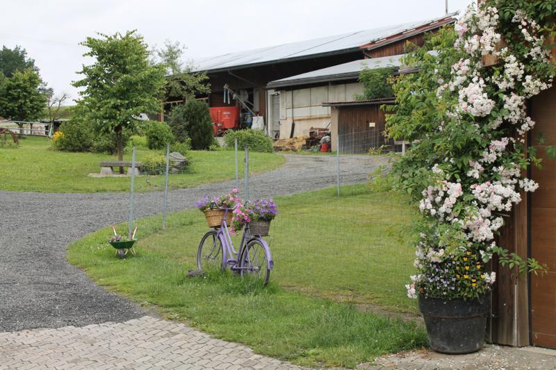 Auf der Straußenfarm: 21. Juni 2015 - 011.JPG