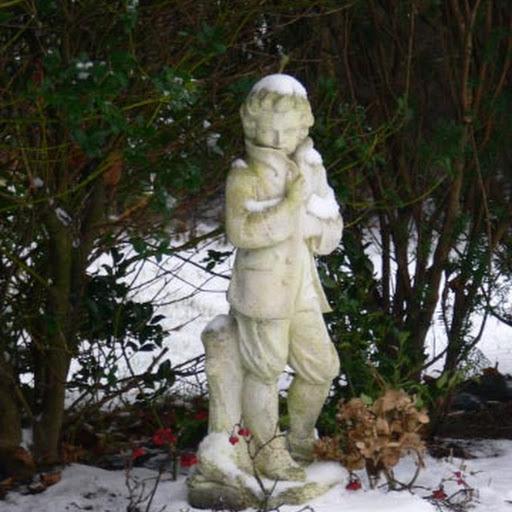 Boy in the winter garden.