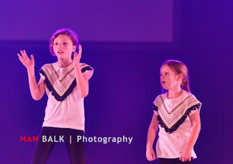 Han Balk Voorster Dansdag 2016-3274.jpg
