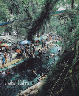 Umbul cokro