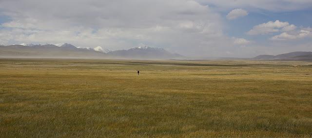 Sur le syrt de Kara Say : vue vers le Sud-Est et le Terskey Alatau, 11 juillet 2006. Photo : J.-M. Gayman