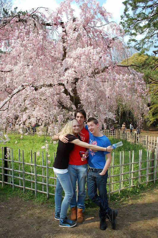 2014 Japan - Dag 10 - jordi-DSC_0863.JPG
