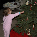 First Look at the Christmas tree