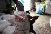 Penyaluran Pupuk Bersubsidi Mandek di 57 Daerah, Ini Biang Keroknya