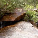Creek running into America Bay Waterfall (30506)
