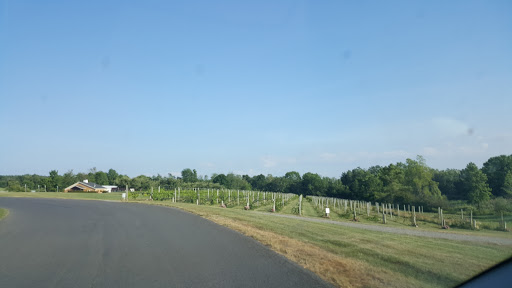 Winery «Owera Vineyards», reviews and photos, 5276 E Lake Rd, Cazenovia, NY 13035, USA