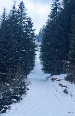 20170103_Carpathians_125.jpg