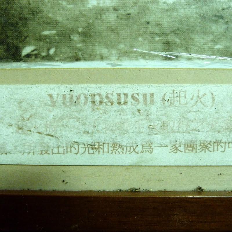 Shanmei, en scooter. J 16 - P1180831.JPG