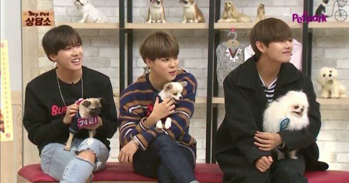 This Clip Of Bts V Teasing A Puppy Is Too Cute To Handle Koreaboo