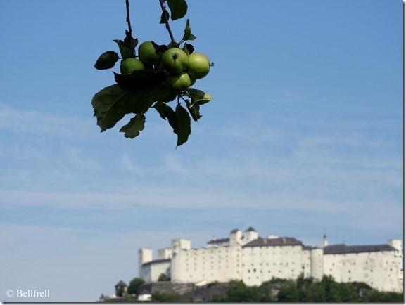 Äpfel vor der Festung