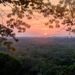 Amazing sunset view from top of tree tower in rainforest canopy