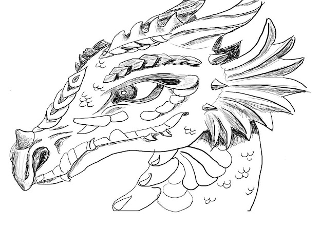 Affordable Dragon Coloring Pages For Adults From