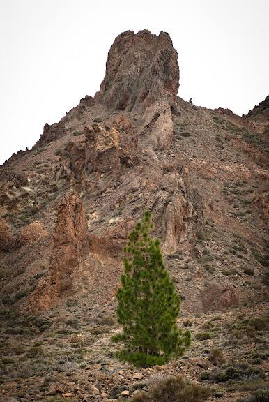 Hiszpania -- Teneryfa: Teide National Park..