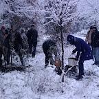 Зимняя уборка в Дендрарии 073.jpg
