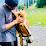 Bhavin Bhojani's profile photo