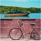 Business Idea - BICYCLE REPAIR & BOAT CLEANING