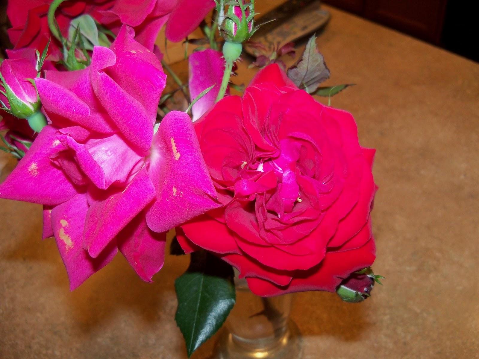 Bouquets - 101_0728.JPG
